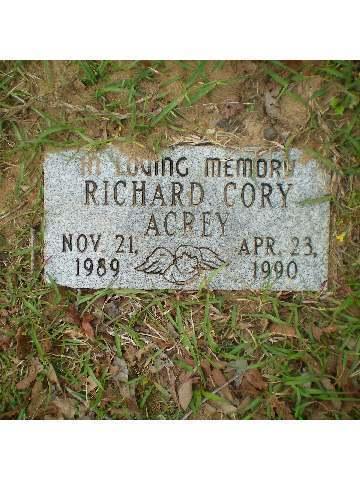 richard cory explication essay the end of richard cory term richard cory explication essay explication of richard cory essay